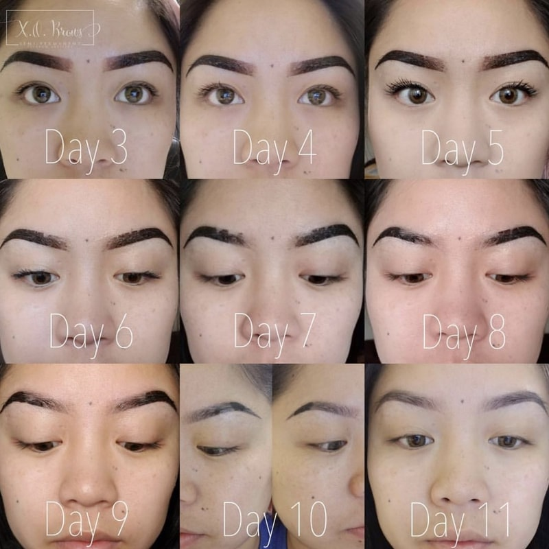 Eyebrow Embroidery Day by Day Healing Process