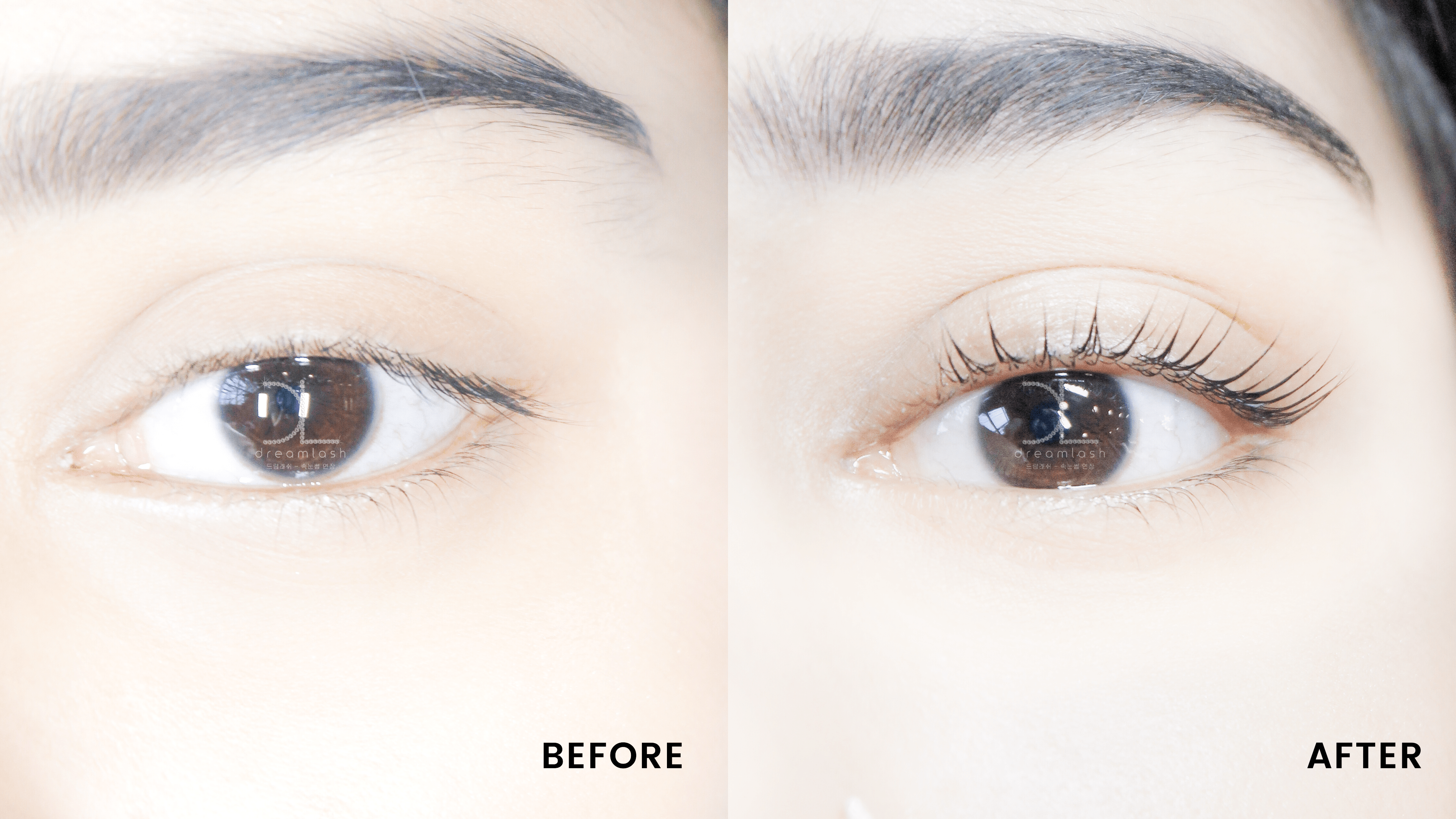 Lash Lift Result - Before and After Filler Lash Lift Service